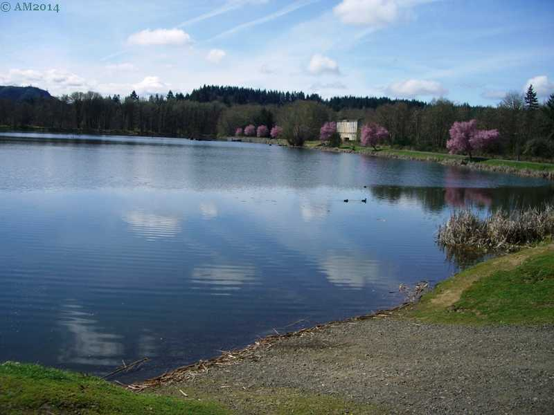 The old mill pond in Vernonia, Oregon is now a recreational lake.