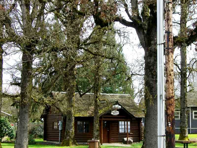 The Banks log cabin is surrounded by oak trees.