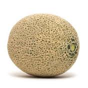 A cantaloupe in Dillard, Oregon.