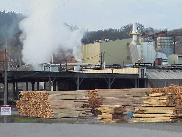 D. R. Johnson sawmill in Riddle, Oregon.