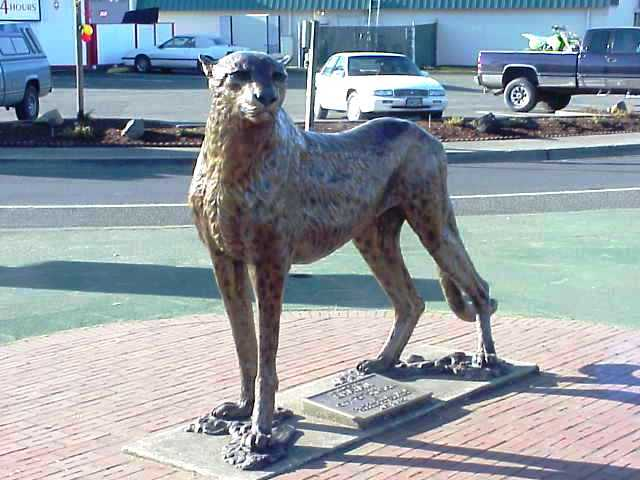 Cheeta sculpture in Winston, Oregon.