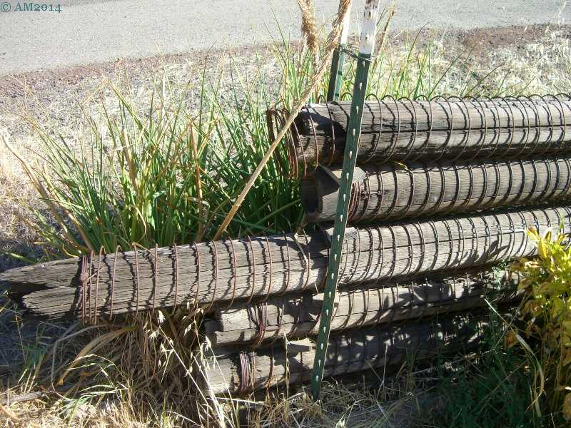 Antique irrigation pipe in Trail, Oregon